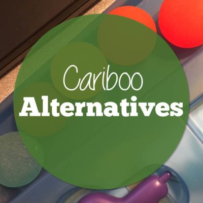Cariboo Alternatives for Speech Therapy and Special Ed