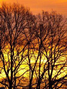 Take a breath winter sunrise