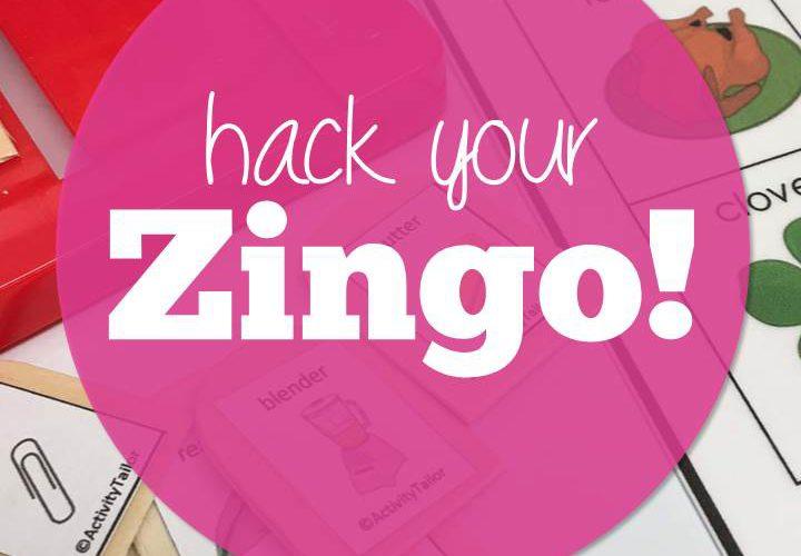 Hack Your Zingo!
