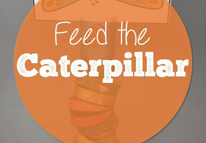 Feed the Caterpillar and other Buggy Fun!